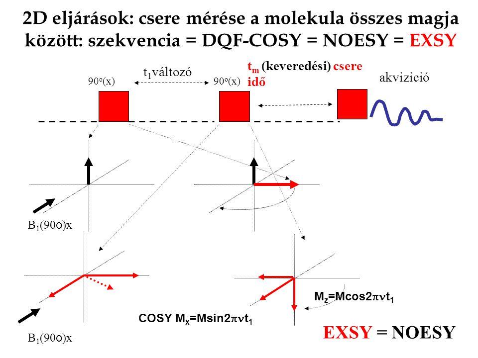 2D eljárások: csere mérése a molekula összes magja között: szekvencia = DQF-COSY = NOESY = EXSY
