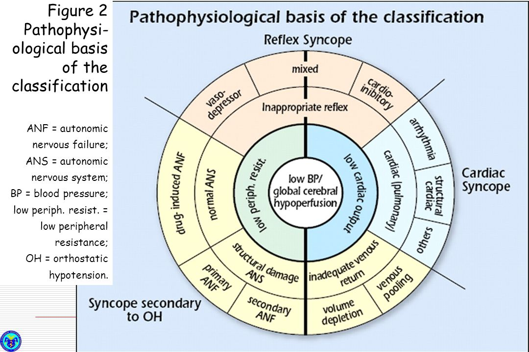 Figure 2 Pathophysi-ological basis of the classification