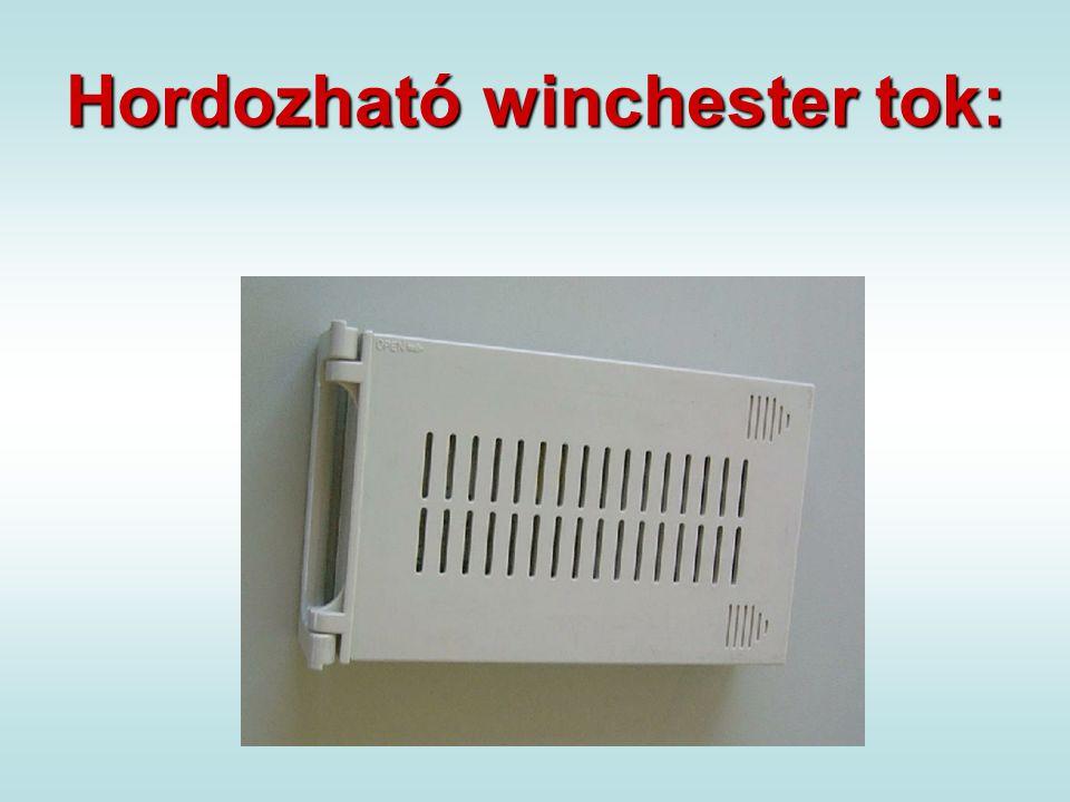 Hordozható winchester tok:
