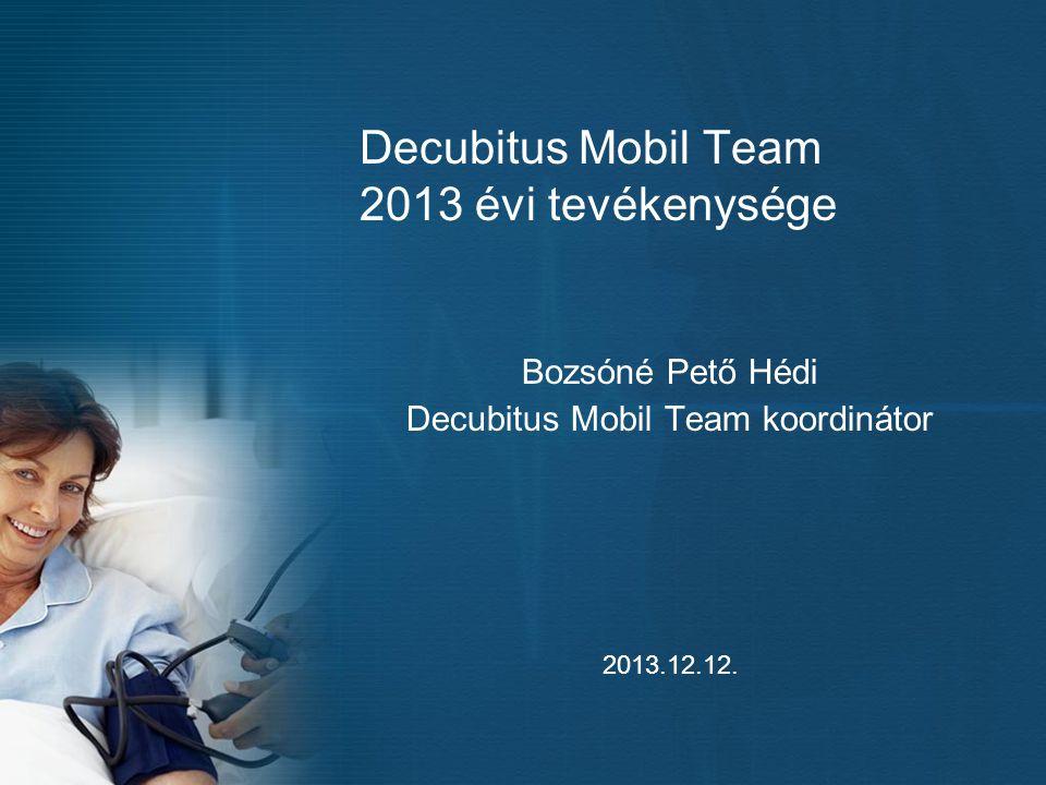 Decubitus Mobil Team 2013 évi tevékenysége