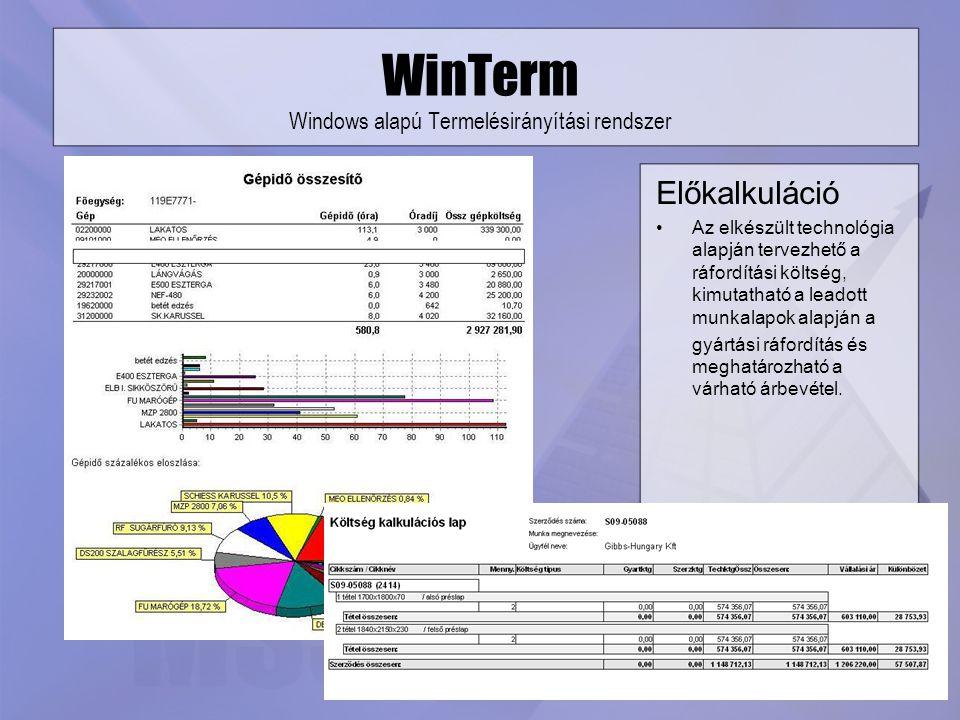 WinTerm Windows alapú Termelésirányítási rendszer