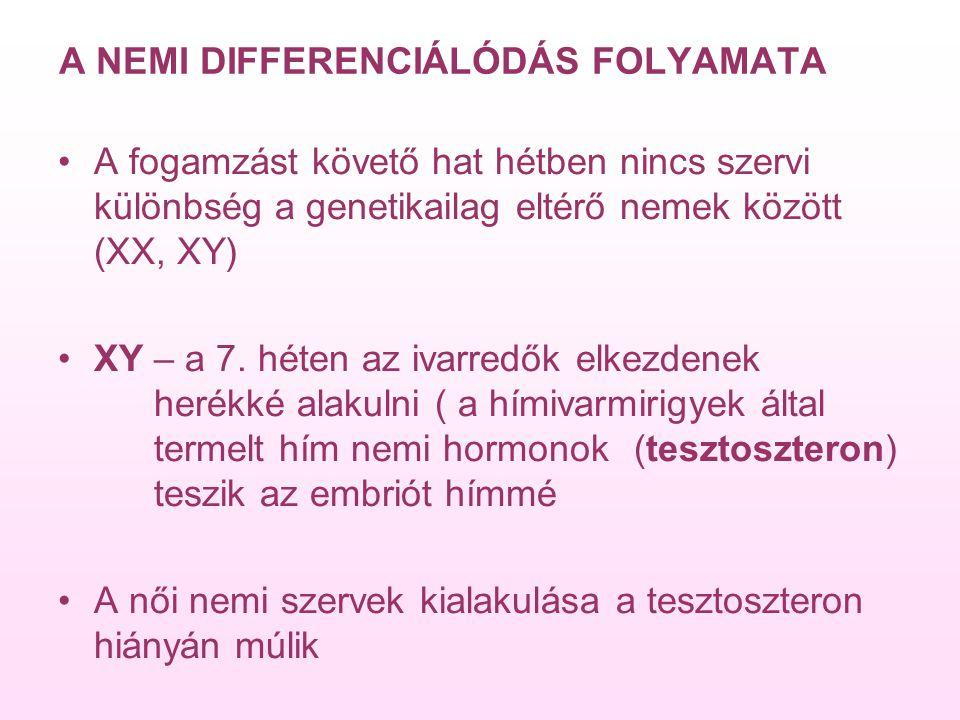 A NEMI DIFFERENCIÁLÓDÁS FOLYAMATA