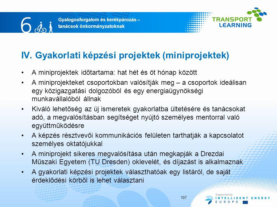 IV. Gyakorlati képzési projektek (miniprojektek)