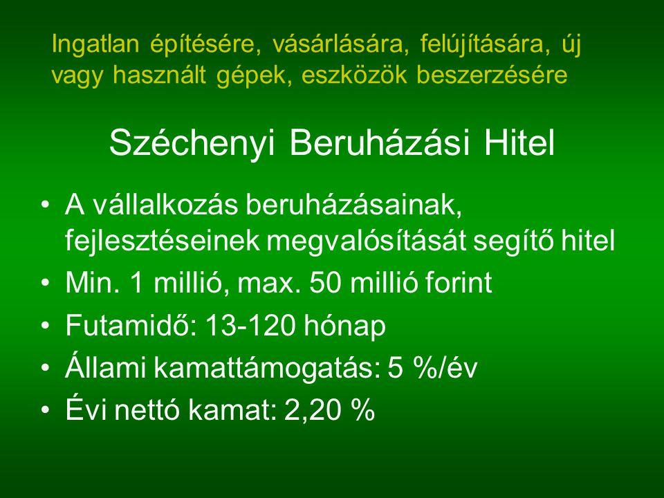 Széchenyi Beruházási Hitel