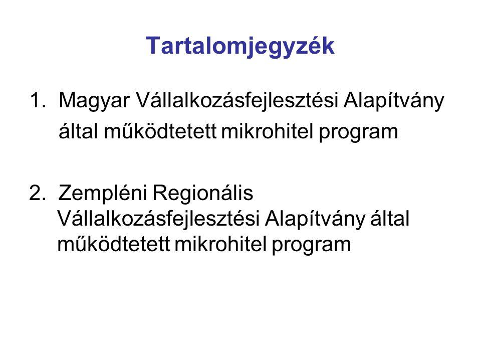 Tartalomjegyzék 1. Magyar Vállalkozásfejlesztési Alapítvány
