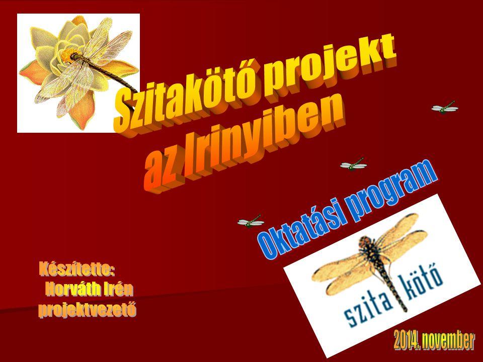 Szitakötő projekt az Irinyiben Készítette: Horváth Irén projektvezető