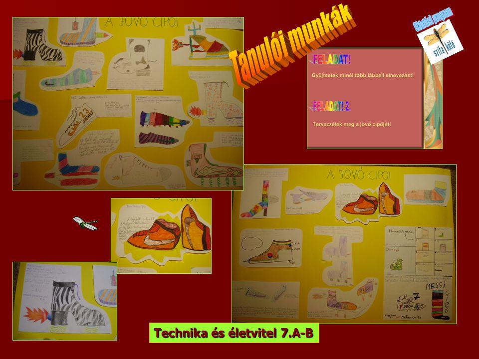Oktatási program Tanulói munkák Technika és életvitel 7.A-B