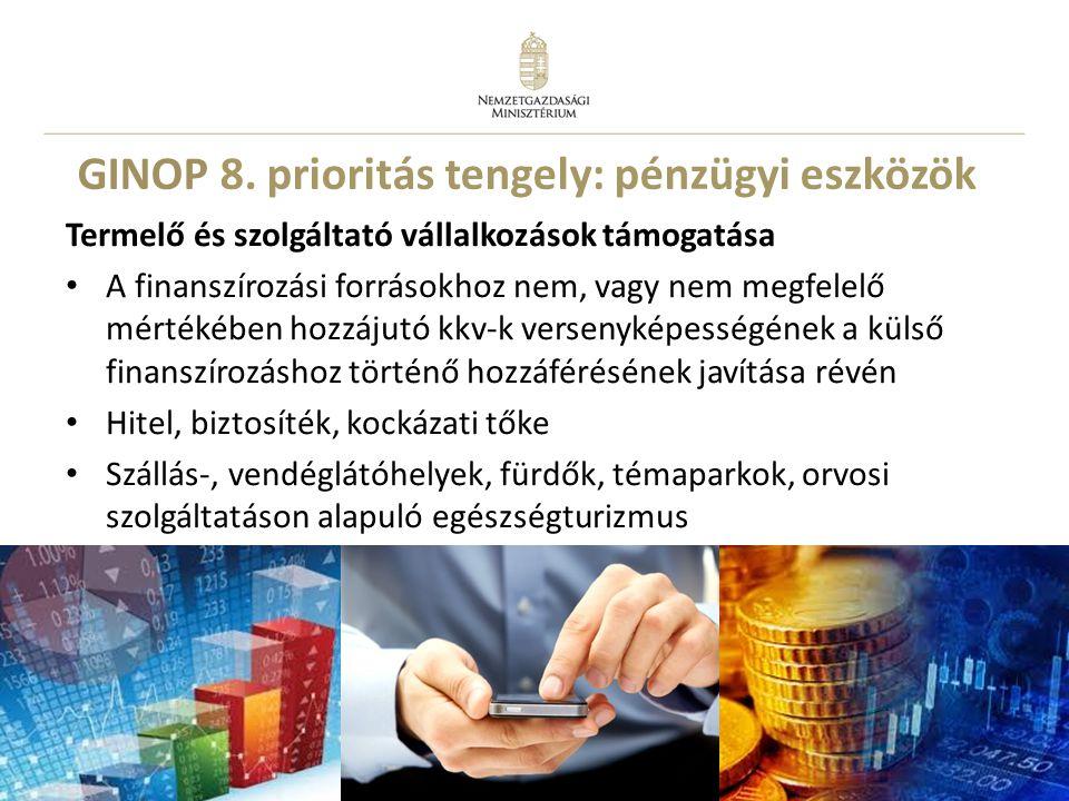 GINOP 8. prioritás tengely: pénzügyi eszközök