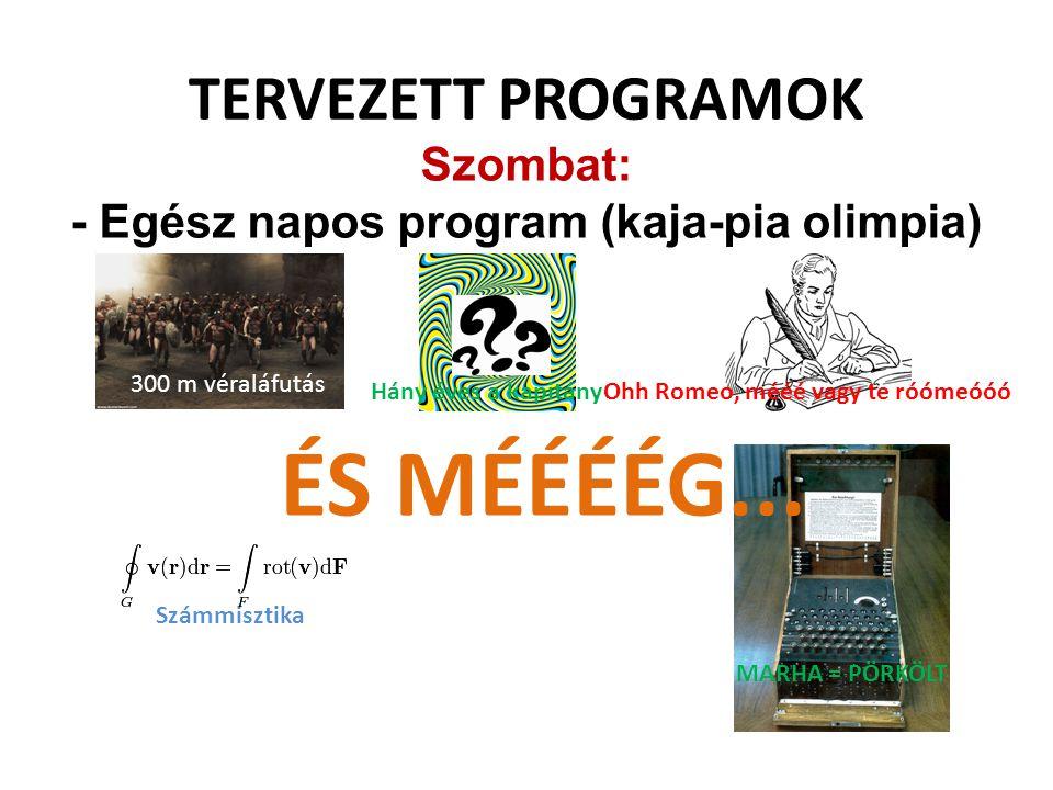 - Egész napos program (kaja-pia olimpia)