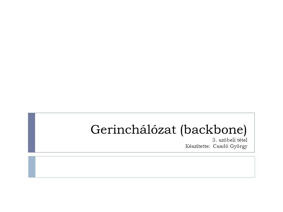Gerinchálózat (backbone) 3. szóbeli tétel Készítette: Csadó György