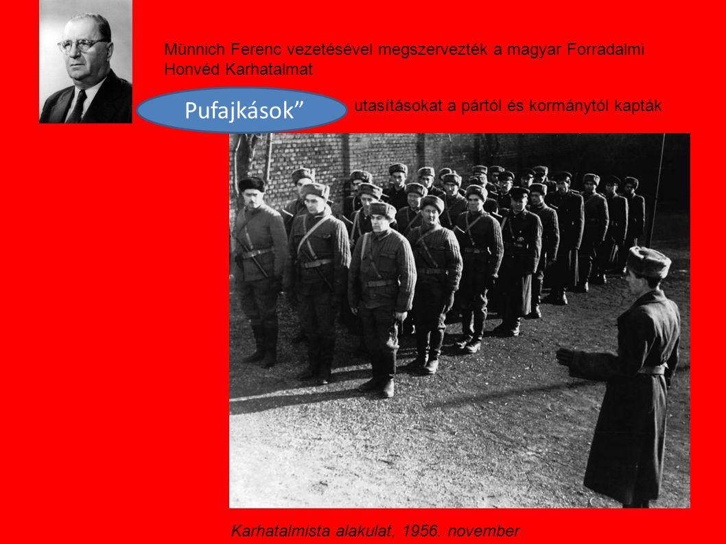 Münnich Ferenc vezetésével megszervezték a magyar Forradalmi Honvéd Karhatalmat
