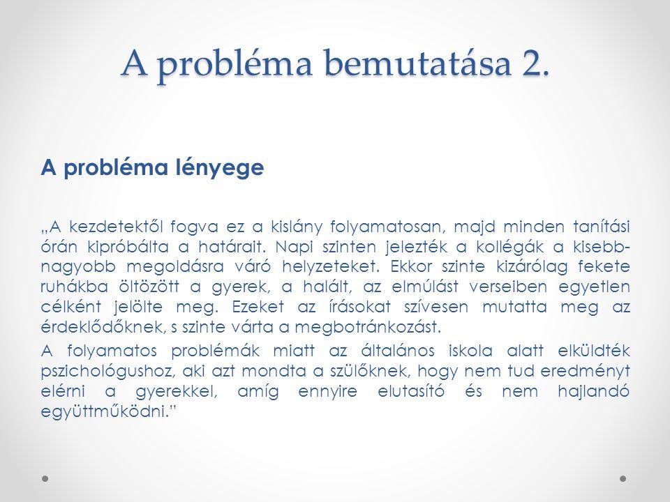 A probléma bemutatása 2. A probléma lényege