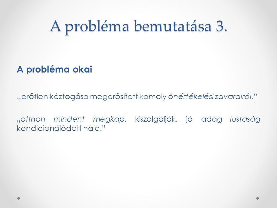 A probléma bemutatása 3. A probléma okai