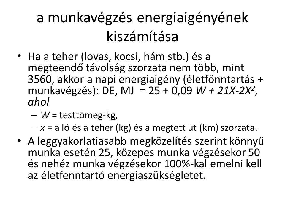 a munkavégzés energiaigényének kiszámítása