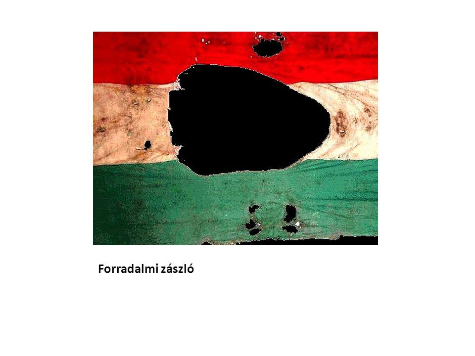 Forradalmi zászló