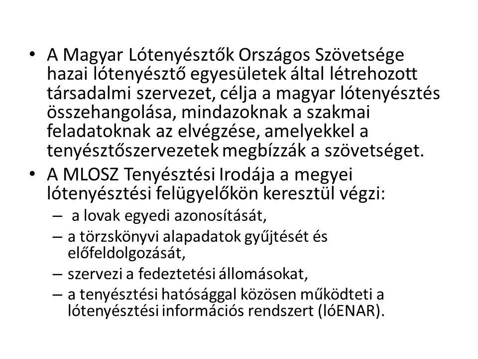 A Magyar Lótenyésztők Országos Szövetsége hazai lótenyésztő egyesületek által létrehozott társadalmi szervezet, célja a magyar lótenyésztés összehangolása, mindazoknak a szakmai feladatoknak az elvégzése, amelyekkel a tenyésztőszervezetek megbízzák a szövetséget.