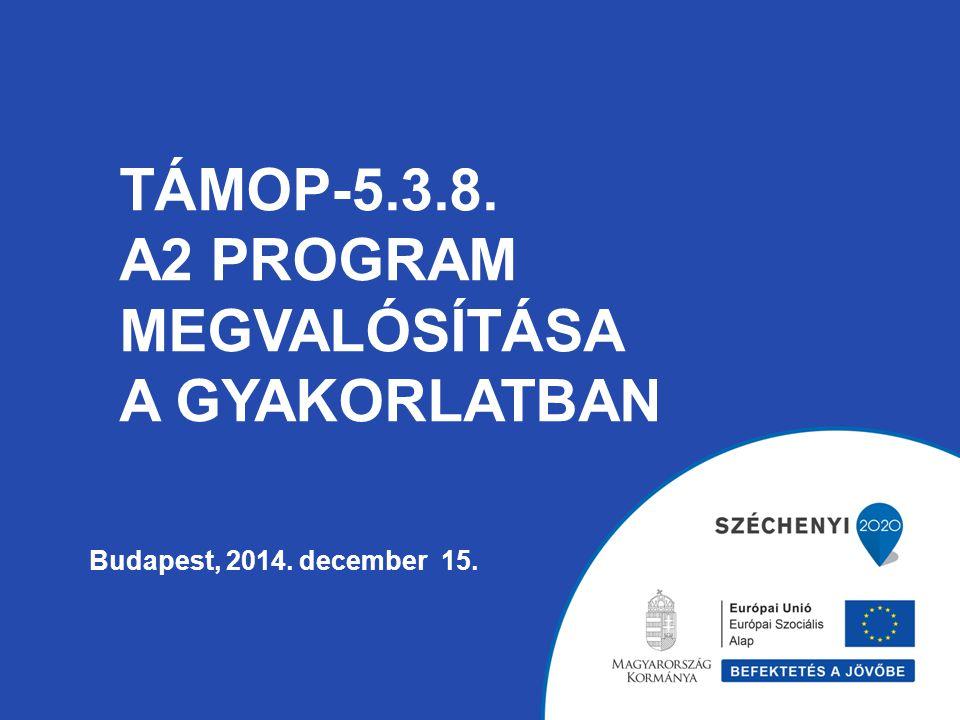 TÁMOP-5.3.8. A2 program megvalósítása a gyakorlatban