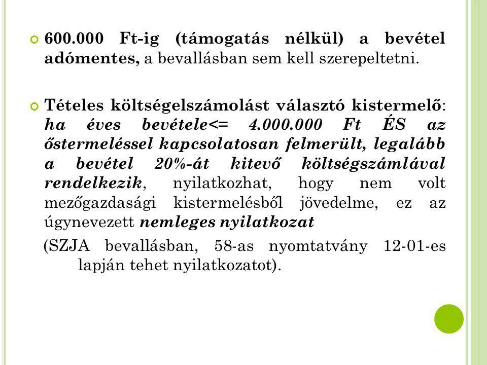 600.000 Ft-ig (támogatás nélkül) a bevétel adómentes, a bevallásban sem kell szerepeltetni.