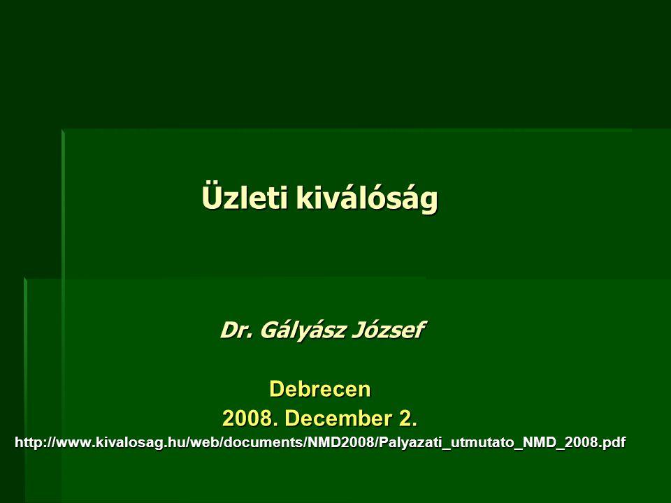 Üzleti kiválóság Dr. Gályász József Debrecen 2008. December 2.