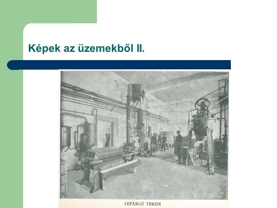 Képek az üzemekből II.