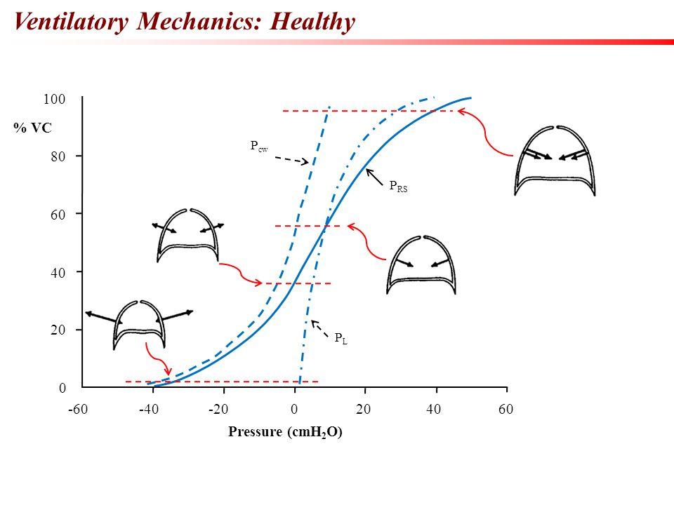 Ventilatory Mechanics: Healthy