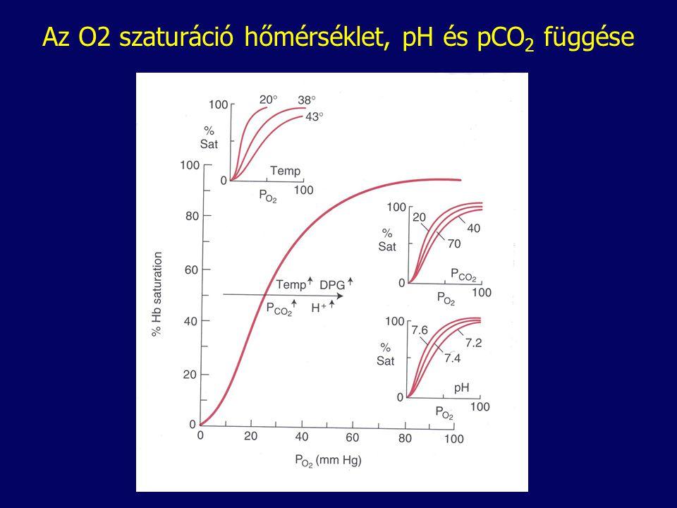 Az O2 szaturáció hőmérséklet, pH és pCO2 függése