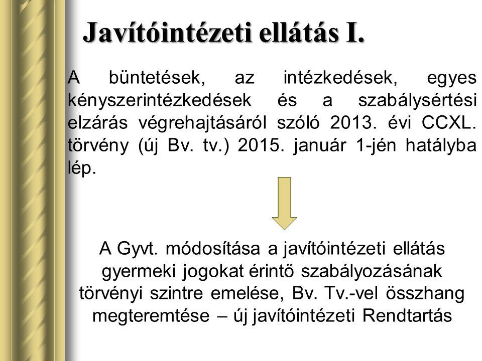 Javítóintézeti ellátás I.