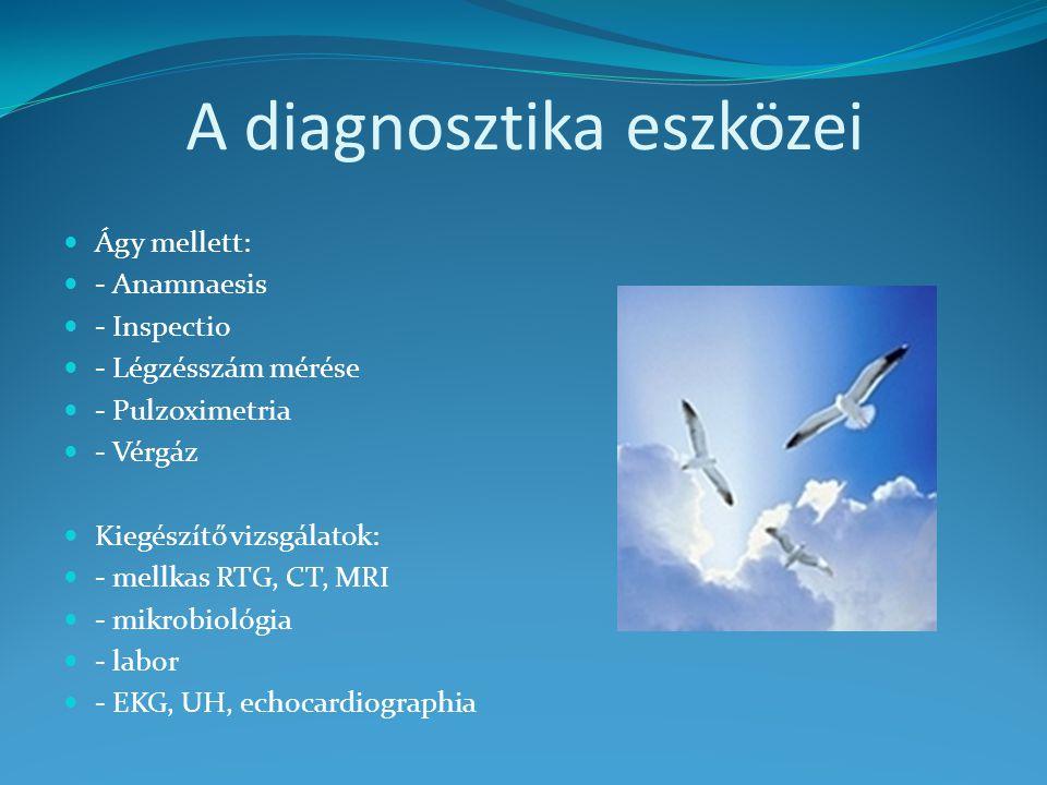 A diagnosztika eszközei