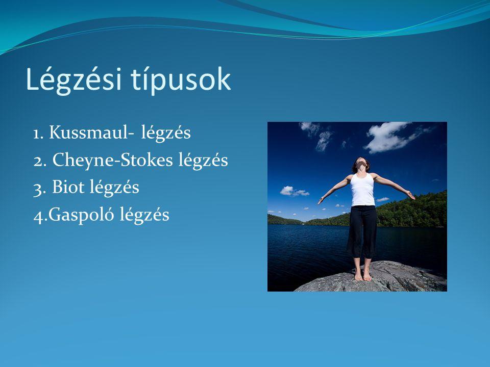 Légzési típusok 1. Kussmaul- légzés 2. Cheyne-Stokes légzés 3. Biot légzés 4.Gaspoló légzés