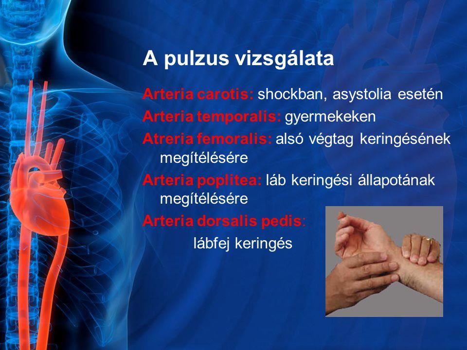 A pulzus vizsgálata Arteria carotis: shockban, asystolia esetén