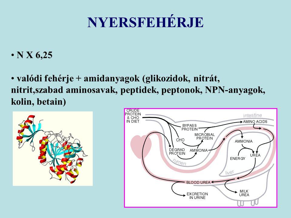 NYERSFEHÉRJE N X 6,25.
