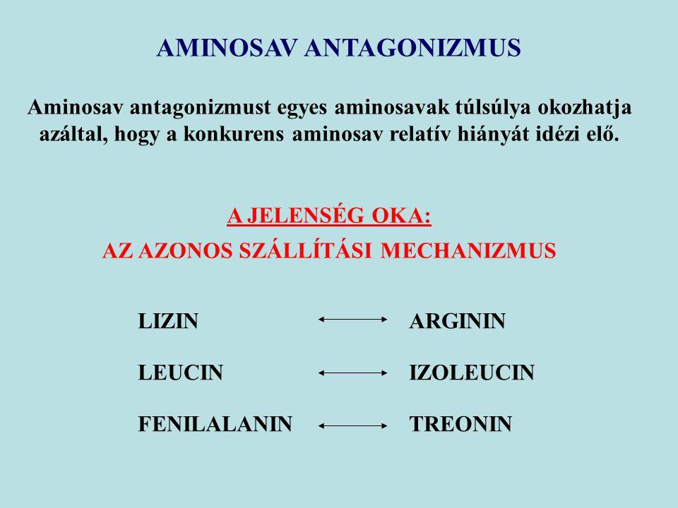 AMINOSAV ANTAGONIZMUS AZ AZONOS SZÁLLÍTÁSI MECHANIZMUS