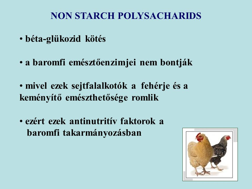 NON STARCH POLYSACHARIDS