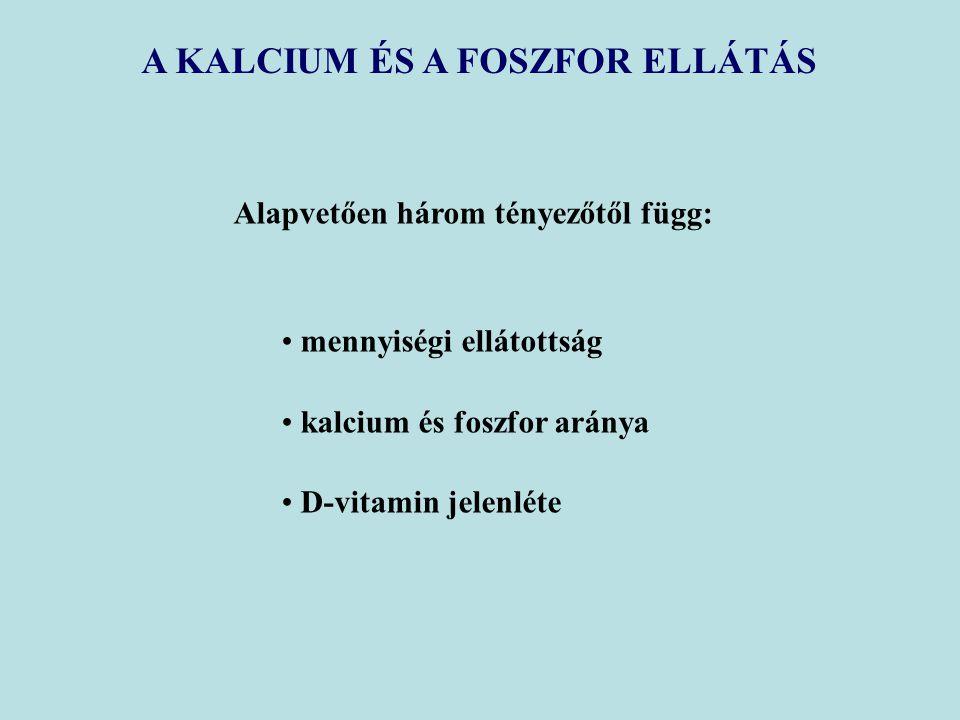 A KALCIUM ÉS A FOSZFOR ELLÁTÁS