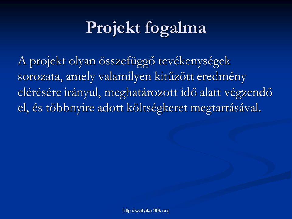 Projekt fogalma