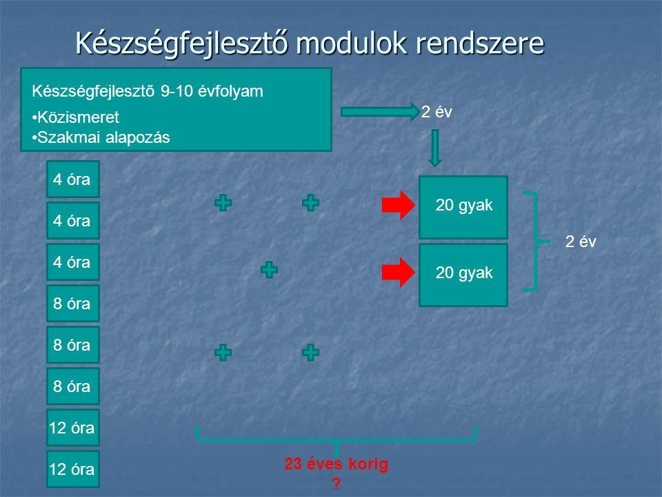Készségfejlesztő modulok rendszere