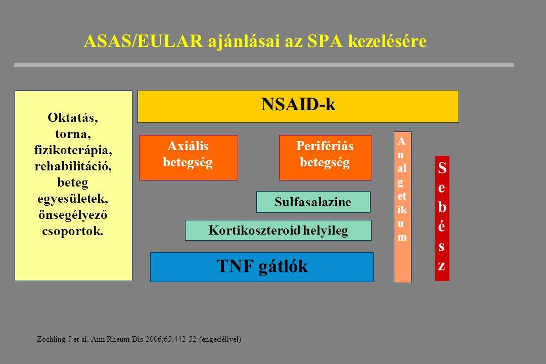 ASAS/EULAR ajánlásai az SPA kezelésére