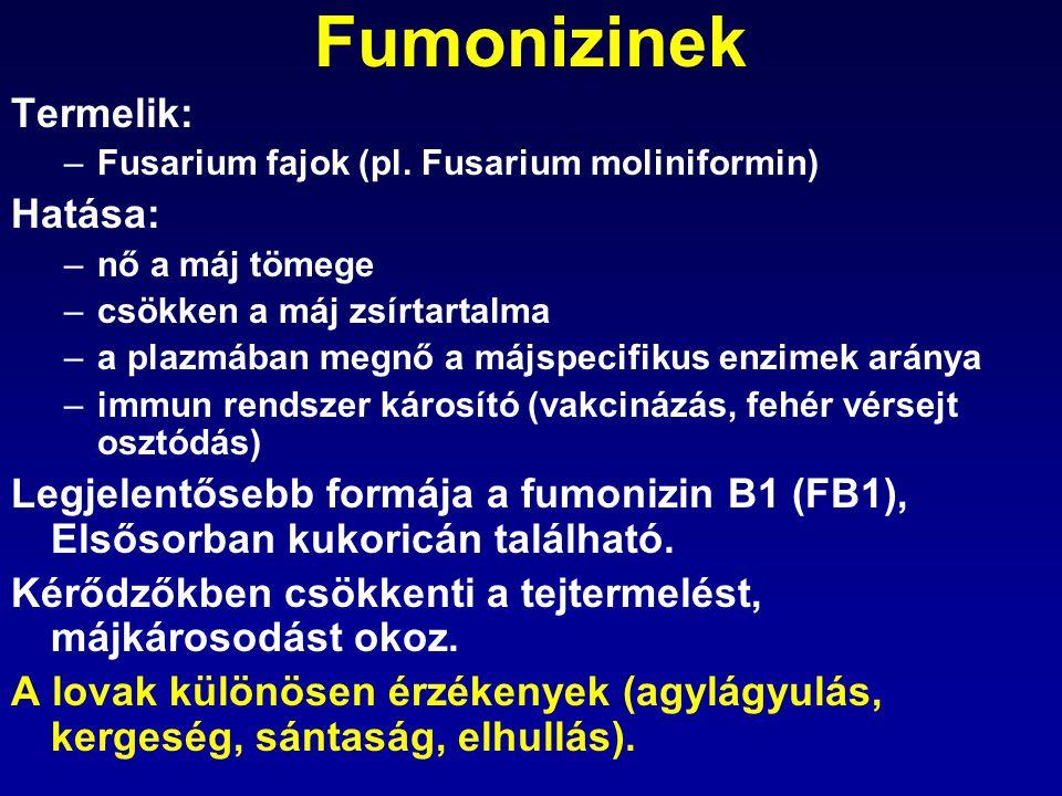 Fumonizinek Termelik: Hatása: