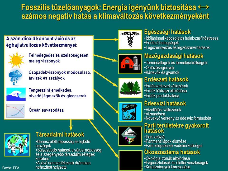 Fosszilis tüzelőanyagok: Energia igényünk biztosítása ↔