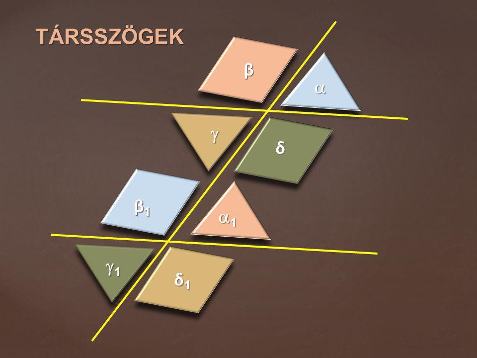 Társszögek β   δ β1 1 1 δ1