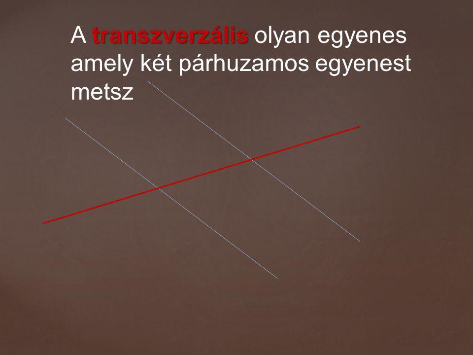 A transzverzális olyan egyenes amely két párhuzamos egyenest metsz