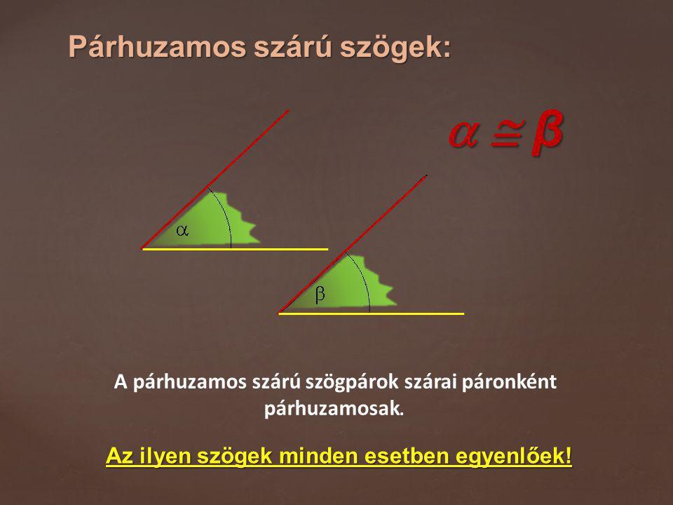   β Párhuzamos szárú szögek: