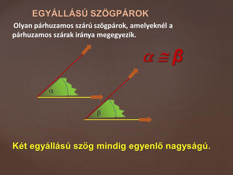   β EGYÁLLÁSÚ SZÖGPÁROK Két egyállású szög mindig egyenlő nagyságú.