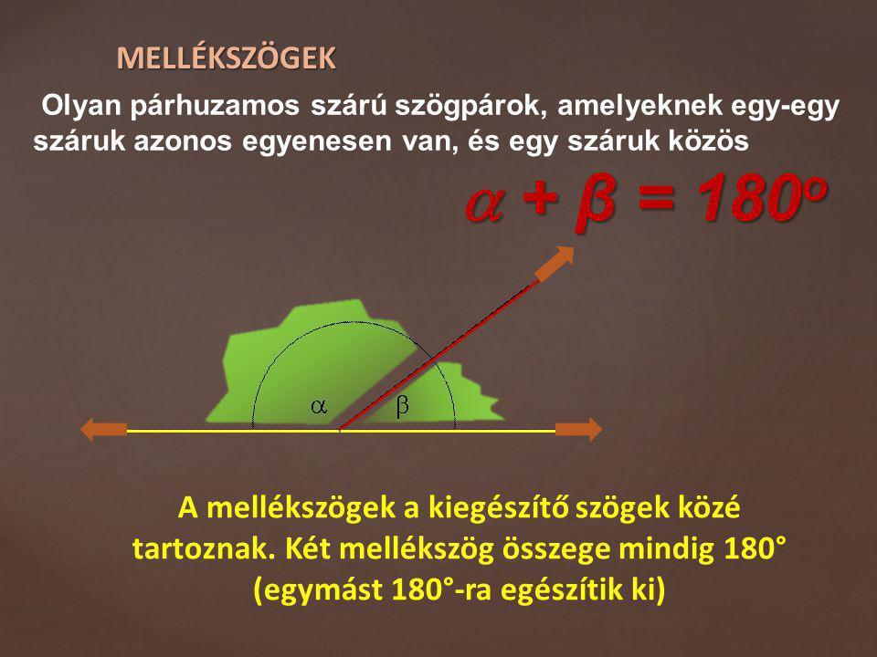 MELLÉKSZÖGEK Olyan párhuzamos szárú szögpárok, amelyeknek egy-egy száruk azonos egyenesen van, és egy száruk közös.