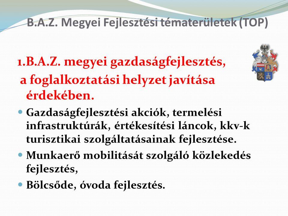 B.A.Z. Megyei Fejlesztési tématerületek (TOP)
