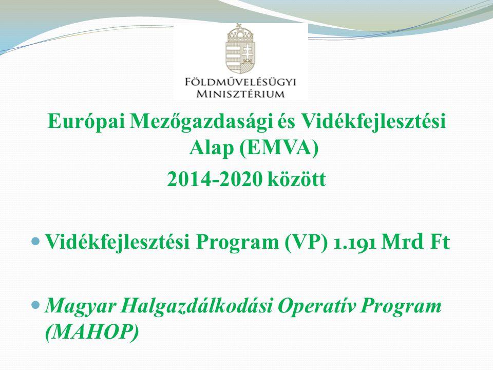 Európai Mezőgazdasági és Vidékfejlesztési Alap (EMVA)