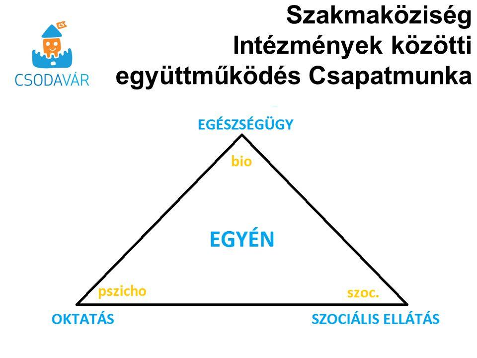Szakmaköziség Intézmények közötti együttműködés Csapatmunka