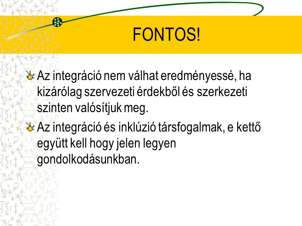 FONTOS! Az integráció nem válhat eredményessé, ha kizárólag szervezeti érdekből és szerkezeti szinten valósítjuk meg.