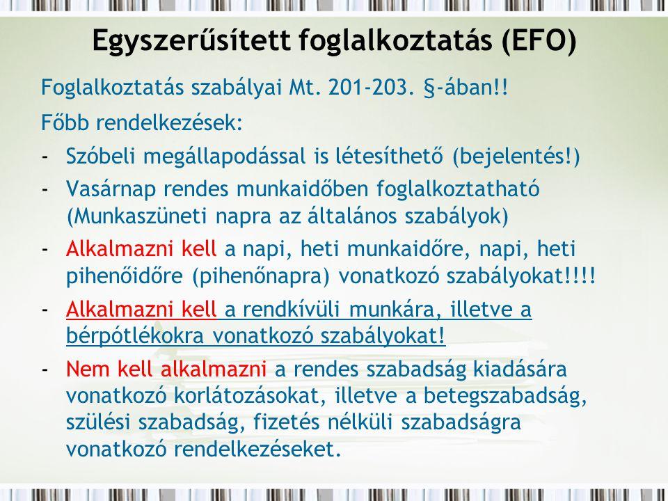 Egyszerűsített foglalkoztatás (EFO)