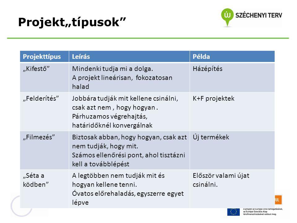 """Projekt""""típusok Projekttípus Leírás Példa """"Kifestő"""